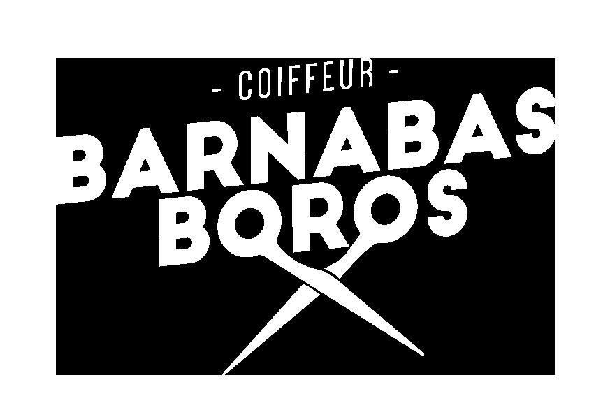 logo-barni
